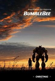 2018-031 bumblebee_xxlg